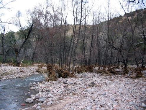 Cajon Bonito - with year round grazing