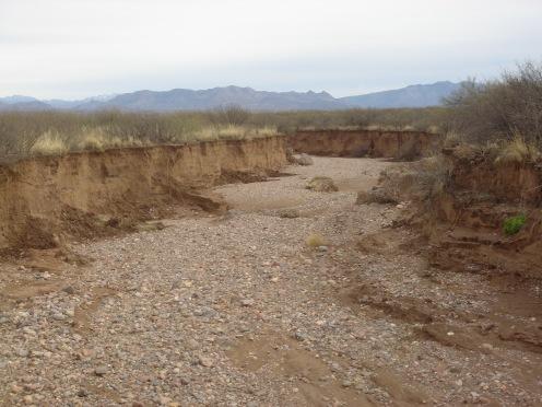 Downcut River Bed