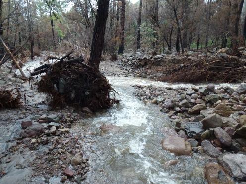 Flooding without gabion