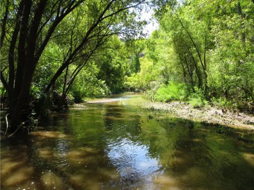 restored-stream